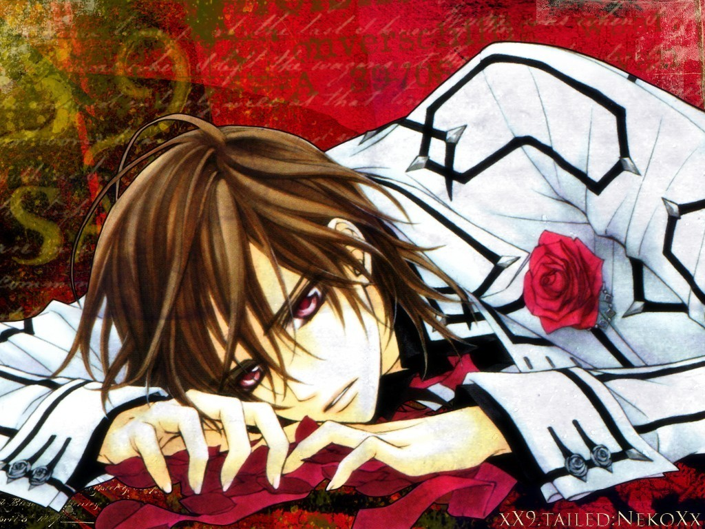 Top 20 hottest heartthrobs uper manga fighters go - Vampire knight anime wallpaper ...